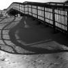 Thumbnail image for Horseneck Beach | Picture Massachusetts