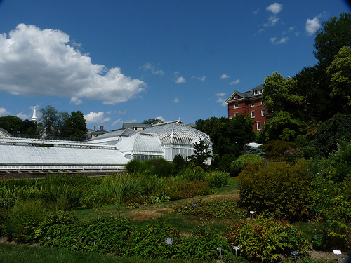 Post image for Green House at Smith College | Picture Massachusetts