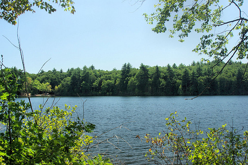 Post image for Walden Pond | Picture Massachusetts