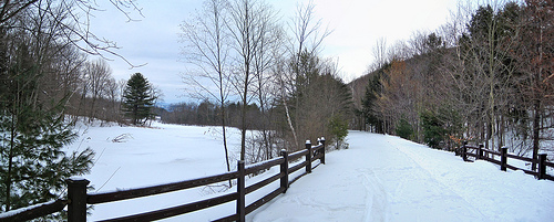 Post image for Ashuwillticook Rail Trail | Picture Massachusetts