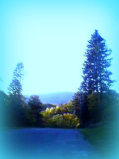 Post image for Hoosac Mountain | Picture Massachusetts