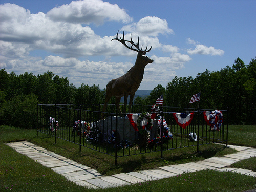 Post image for Moose Statue | Picture Massachusetts