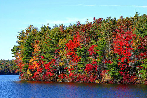 Post image for Autumn | Picture Massachusetts